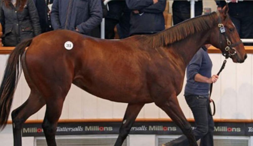Dünyanın en iyi yarış atının fiyatı açıklandı!