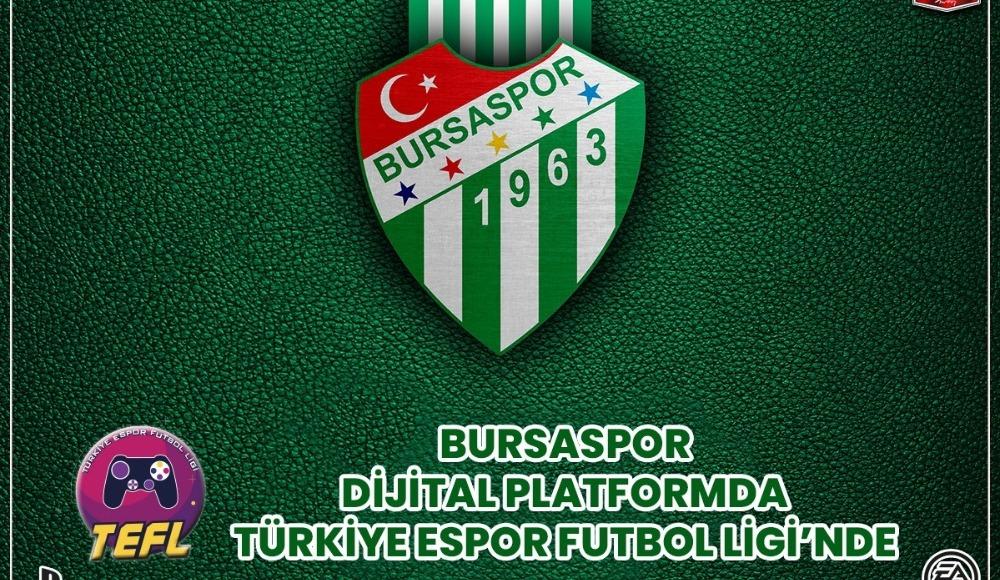 Bursaspor, VPG Turkey Ligi'ne katılacak