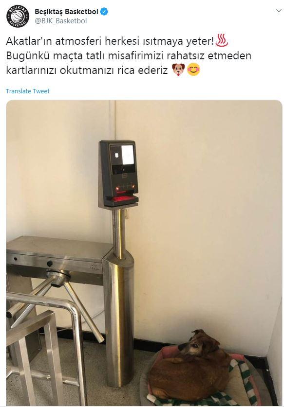 İşte Beşiktaş'ın paylaşımı