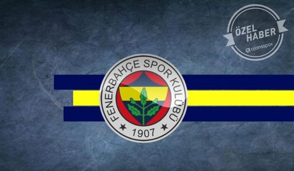 İşte Fenerbahçe'nin yeni teknik direktörü!