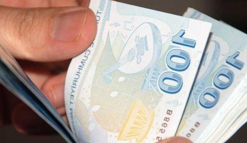 Temel İhtiyaç Desteği kredisi Ziraat - Halkbank başvuru şartları ve sonuçlar!
