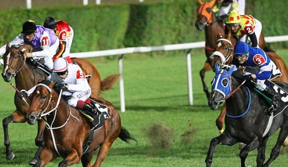 At yarışlarıyla ilgili flaş açıklama