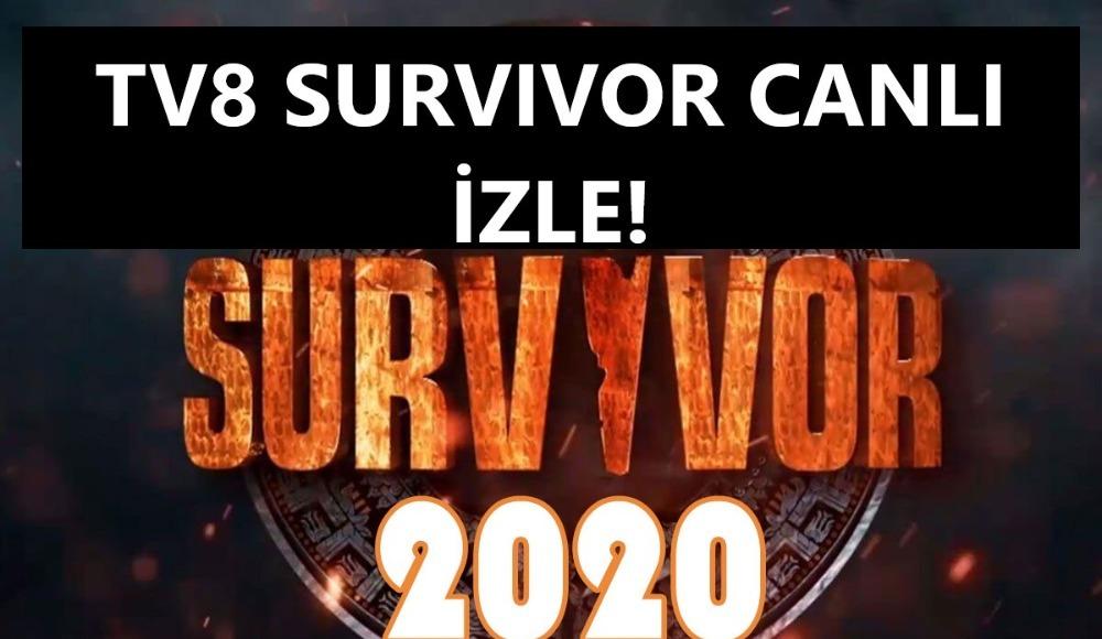 Survivor canlı izle | 101. bölüm canlı yayın | TV8 naklen seyret