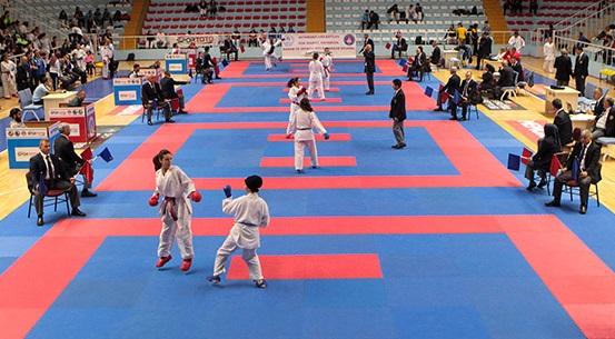 İstanbul'da karate heyecanı