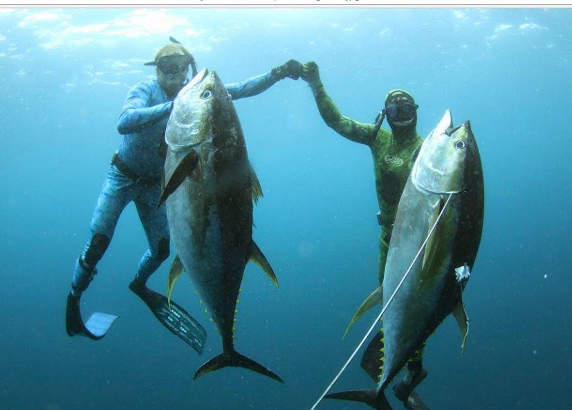 """""""En iyi balık avlayan"""" oldular!"""