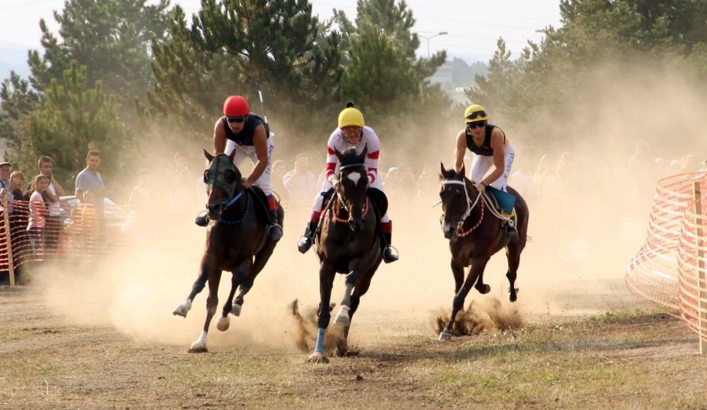 Atatürk ve İstiklal Kupası At Yarışları'nın birincisi Demba Ba isimli atın ayağı kırıldı