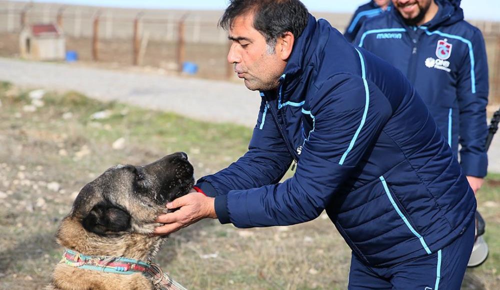Ünal Karaman ve Sosa kangal çiftliğini ziyaret etti