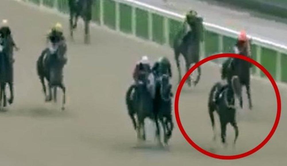 Jokeyini düşüren at yarışı ilk sırada tamamladı